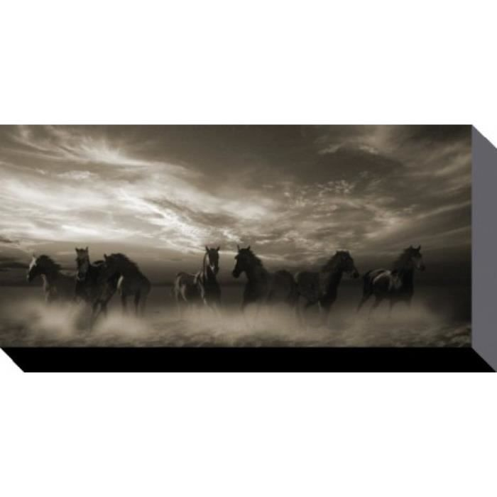 chevaux poster reproduction sur toile tendue sur ch ssis chevaux sauvages au galopp malcolm. Black Bedroom Furniture Sets. Home Design Ideas