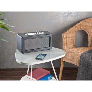 ENCEINTE NOMADE Haut-parleur mobile sans fil 40 W design retro MSS