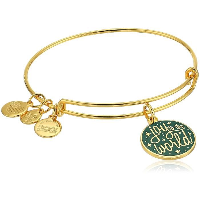 Alex And Ani Paroles de femmes sont puissantes, Joy To The Bracelet Bangle monde, or brillant, Extensible LKQW0