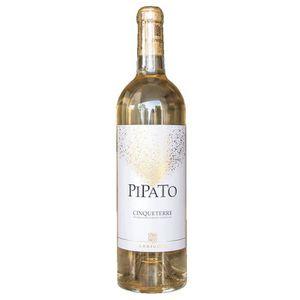 VIN BLANC Pipato vino bianco Cinque Terre DOC 1 bouteille 75