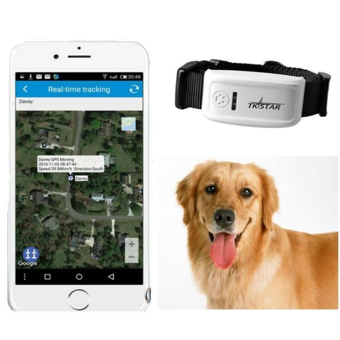 TKSTAR collier GPS pour Chien Traceur Chien avec portée illimitée, Suivi d'activité, Étanche, Léger