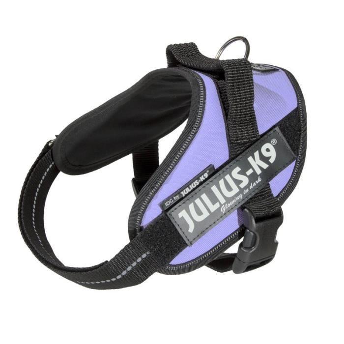 Julius K9 - Harnais IDC-POWER pour chien - Mauve - Taille 1 - Unique aille 1