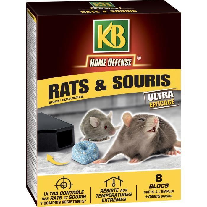 KB Piège Rats et souris - 200 Gr