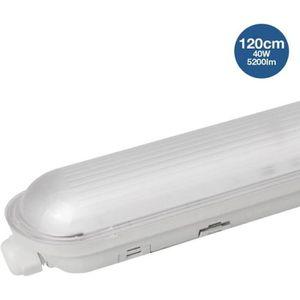 TUBE LUMINEUX Réglette étanche avec LED 40W intégrée 120cm - Tem