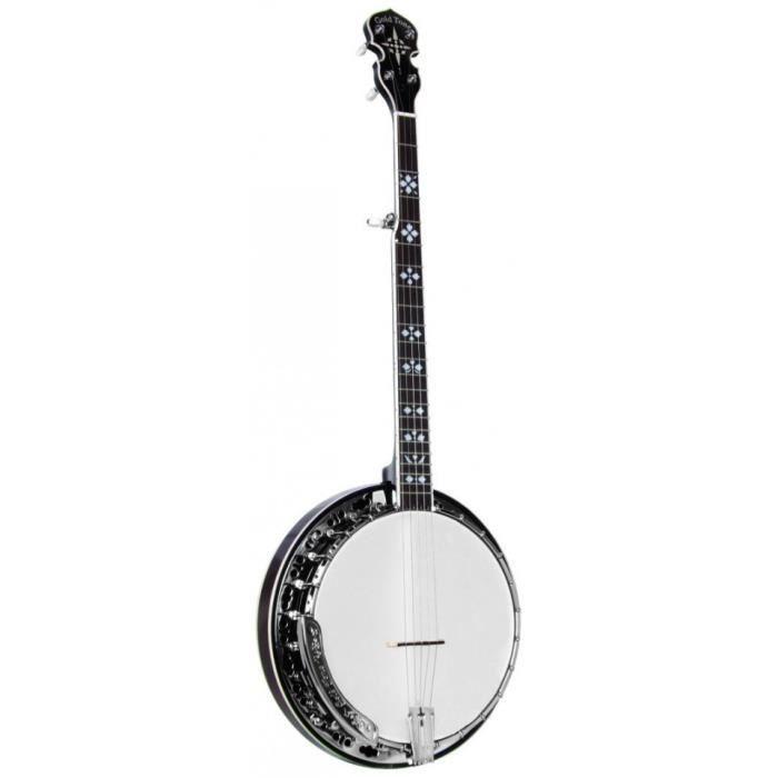 Banjo Bluegrass - Gold Tone BG-150F (+ étui)