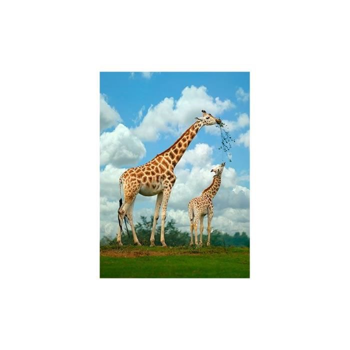 tableau girafe alu dibond 60x40 cm achat vente tableau toile cdiscount. Black Bedroom Furniture Sets. Home Design Ideas