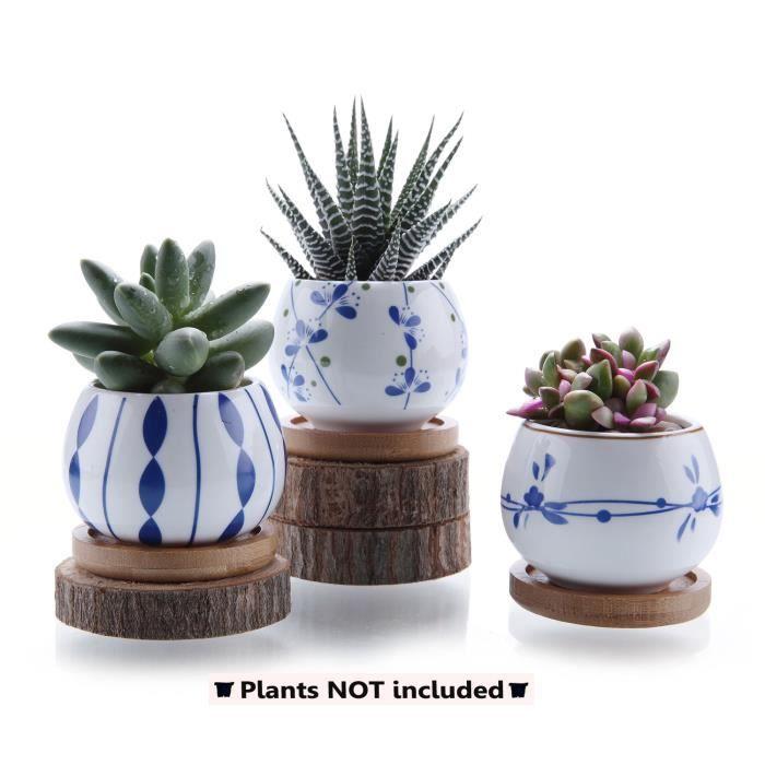 10 pièces mignon Plastique Pots de succulentes Cactus 5 Couleurs Home Fleurs