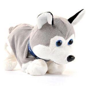POUPÉE Le son de contrôle électroniques pour chiens Jouet