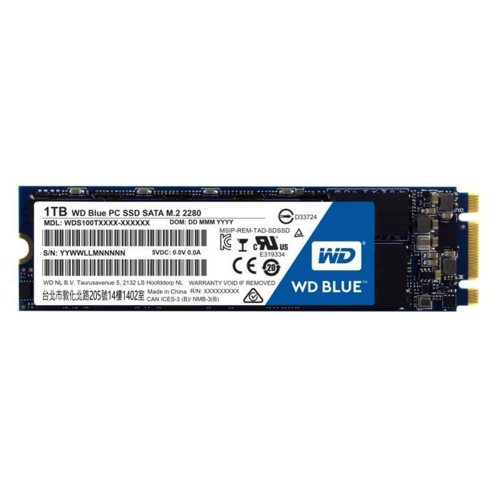 WD Blue? SSD 1 To M.2 2280 WDS100T1B0B