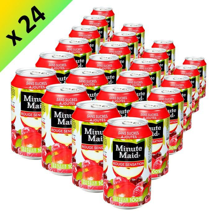MINUTE MAID Fruit Rouge Boite 33cl (x24)
