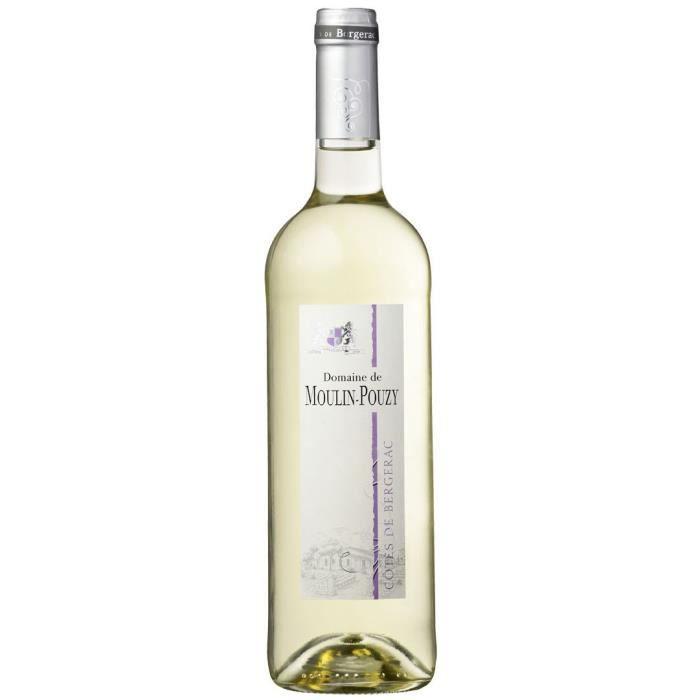 Domaine de Moulin-Pouzy Classique 2016 Côtes de Bergerac - Vin blanc du Sud-Ouest