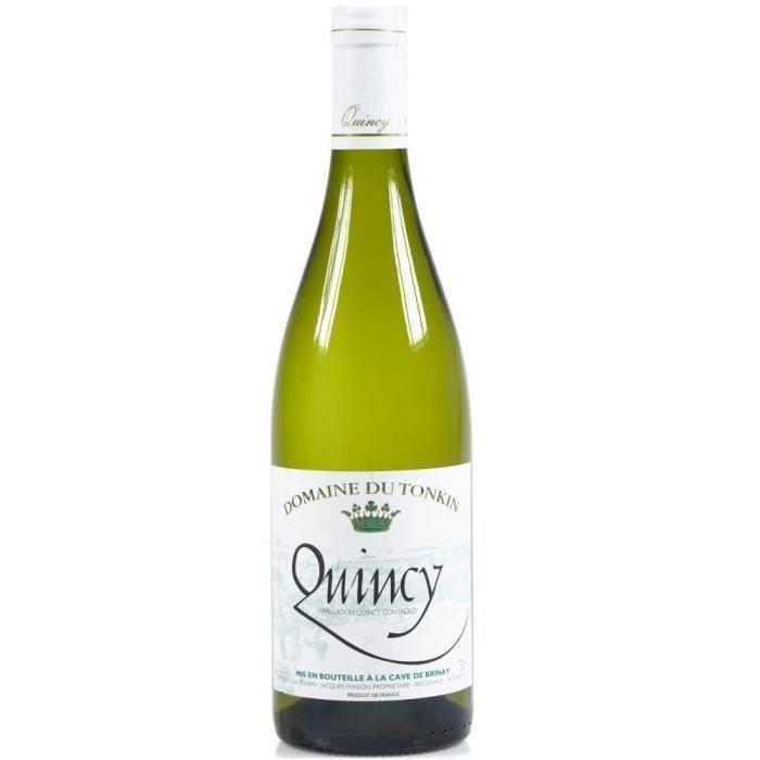 Domaine du Tonkin 2020 Quincy - Vin blanc de la Val de Loire