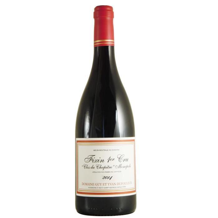 Domaine Guy et Yvan Dufouleur 2014 Clos du Chapitre - Monopole- - Vin rouge de Bourgogne