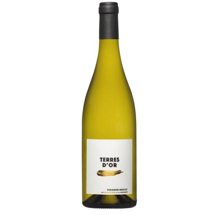 Terres d'Or Muscat sec viognier Vin blanc d'Alsace 75 cl