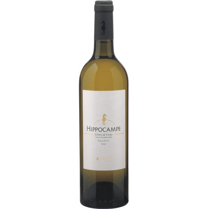 Les Caves Richemer Hippocampe 2019 Côtes de Thau - Vin blanc de Languedoc