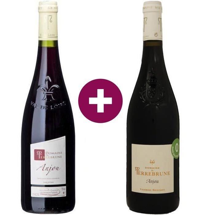 Duo de Vin Conventionel et Sans Sulfites Ajoutés - Domaine de Terrebrune 2020 Anjou - Vin rouge de la Vallée de la Loire - 2 x 75cl