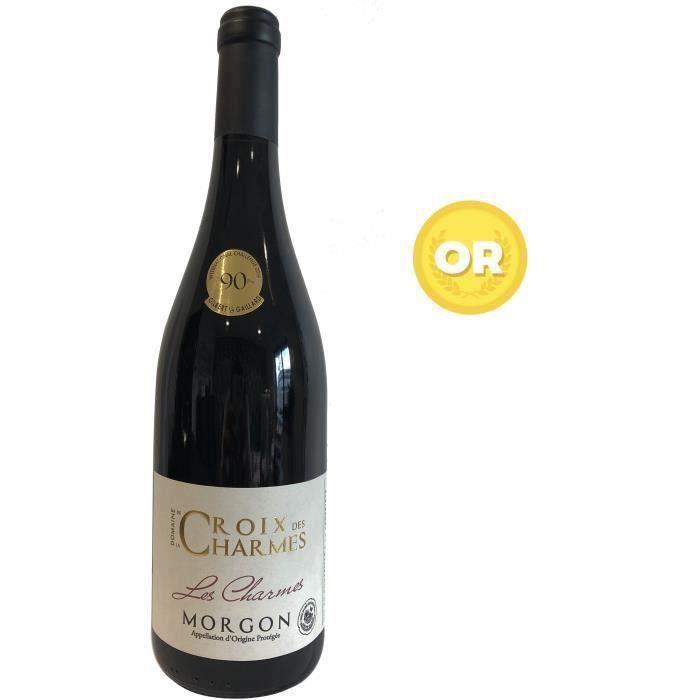 Domaine de la Croix des Charmes 2018 Morgon - Vin rouge de Bourgogne