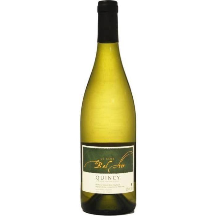 Clos Bel Air 2019 Quincy - Vin blanc de la Loire