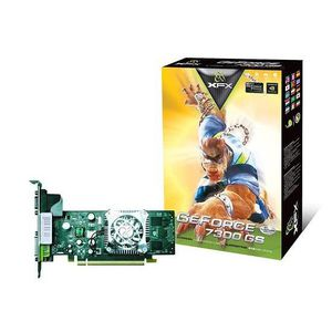 CARTE GRAPHIQUE INTERNE XFX Nvidia GeForce 7300 GS 256 Mo DDR2 (supporte j