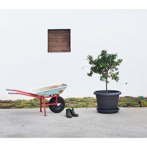 JARDINIÈRE - BAC A FLEUR PLASTIKEN plateau rond Ø 50 cm pour pot rond - Ant