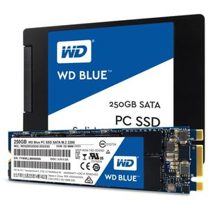 DISQUE DUR SSD WD Blue™  250 Go M.2 2280 WDS250G1B0B