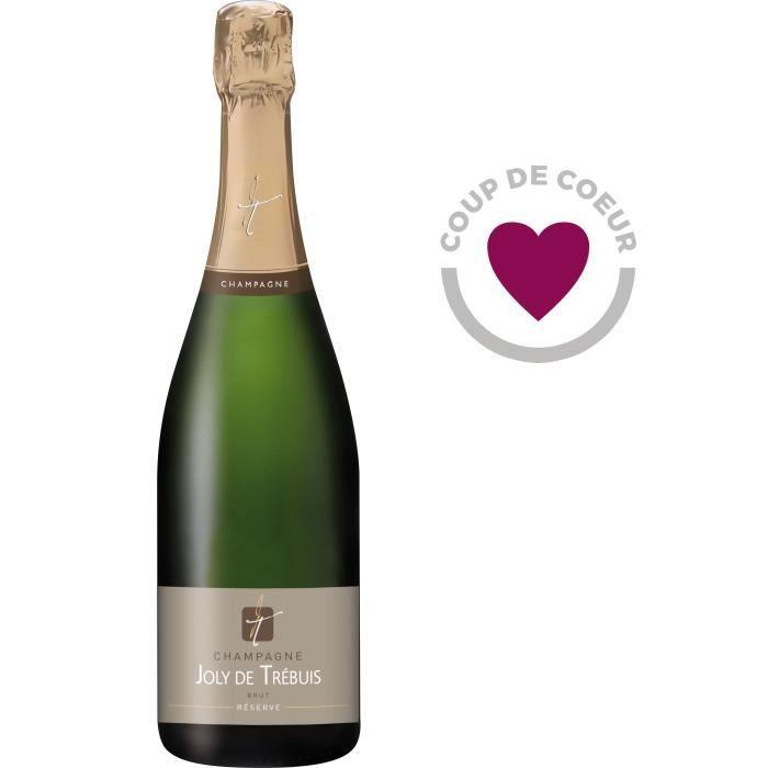 CHAMPAGNE Champagne Joly de Trébuis 75 cl
