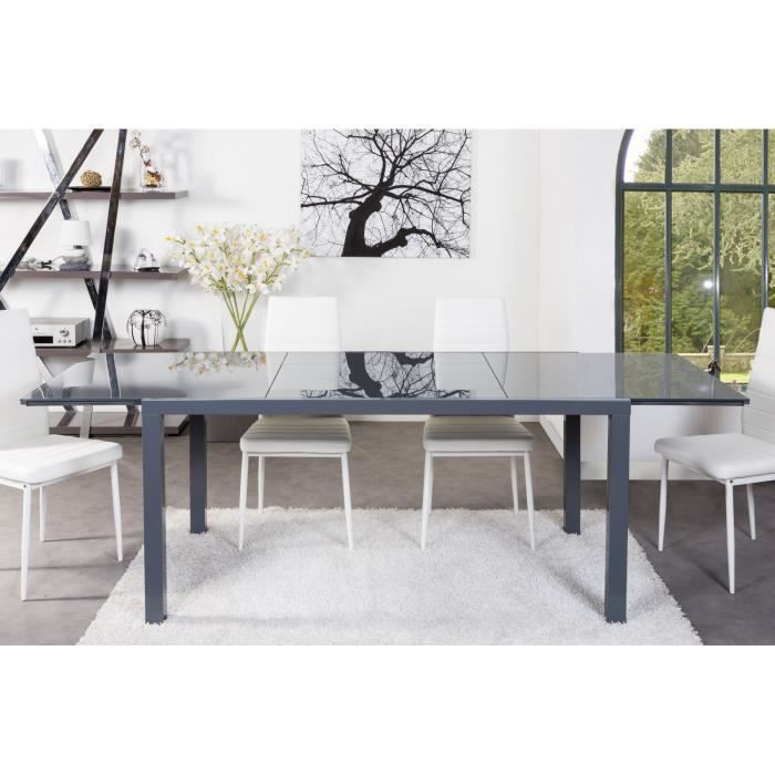 capucine table de s jour extensible 160 240cm gris achat vente table manger capucine table. Black Bedroom Furniture Sets. Home Design Ideas