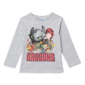 T-SHIRT DRAGONS 3 - T-shirt Manches longues - Gris - Garço