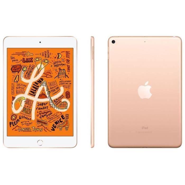 """TABLETTE TACTILE iPad mini - 7,9"""" 64Go WiFi - Or"""