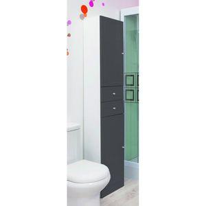 COLONNE - ARMOIRE SDB TOLEDE Colonne de salle de bain L 35 cm - Gris ant