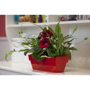 JARDINIÈRE - BAC A FLEUR Jardinière plastique rouge brillant 10x25 cm