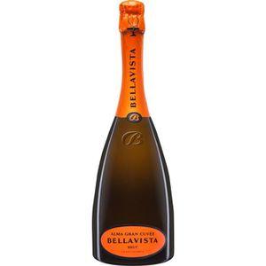VIN BLANC FRANCIAORTA Bellavista Vin d'Italie - Blanc - 75 c