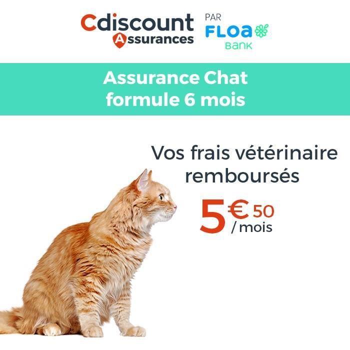ASSURANCES Assurance Chat 6 mois