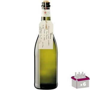 PÉTILLANT & MOUSSEUX 6x Prosecco Fiocco di Vite Italie vin blanc efferv